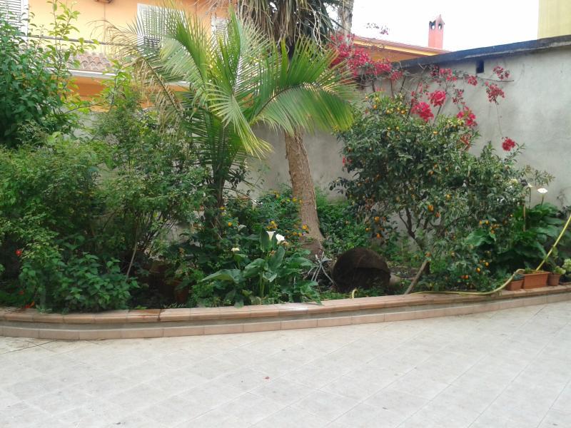 Giardino del cortile.