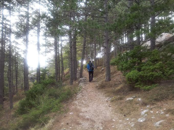 Sentiero in alto, verso montagna Mosor, 20 min a piedi da Villa
