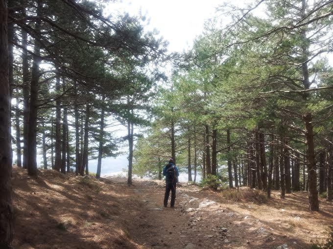 Montagna Mosor dove è possibile effettuare escursioni ed esplorare sempre con una fantastica vista Split