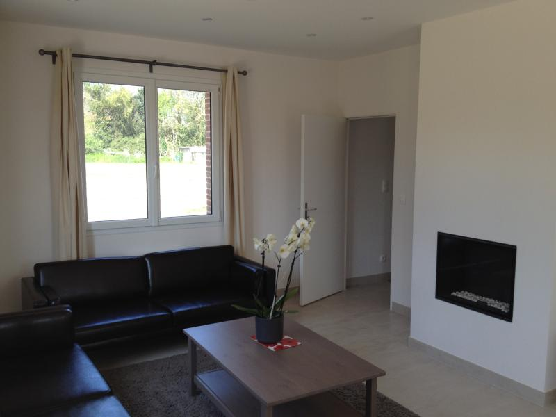 Double reception room with leather sofas and working gas fireplace