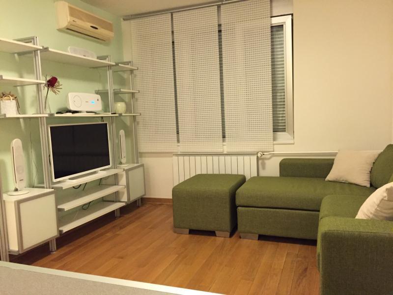 Neptun Apartment, Ferienwohnung in Obrenovac