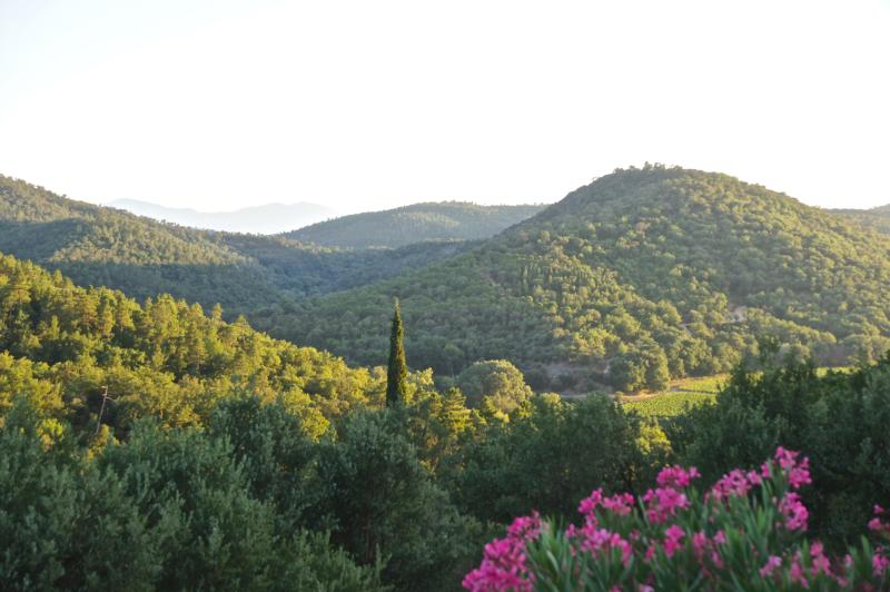 View on massif des Maures