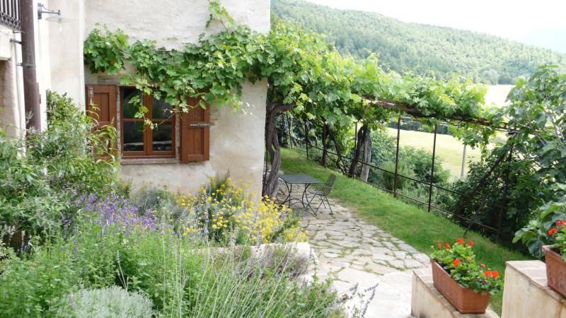 the herb garden and vine patio