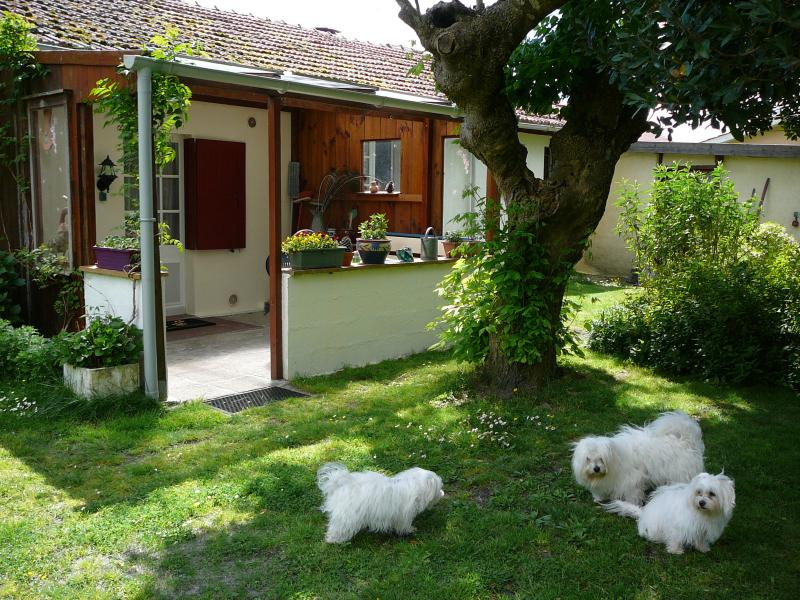 Pfauensitz, studio with garden, holiday rental in Parentis-en-Born