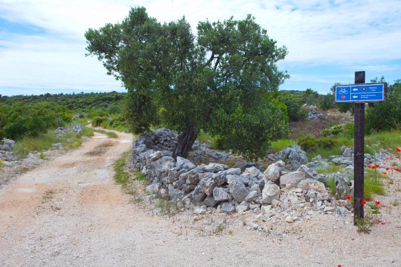 Bike routes around villa