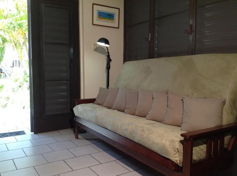 NEW sofa-futon full size at living room.