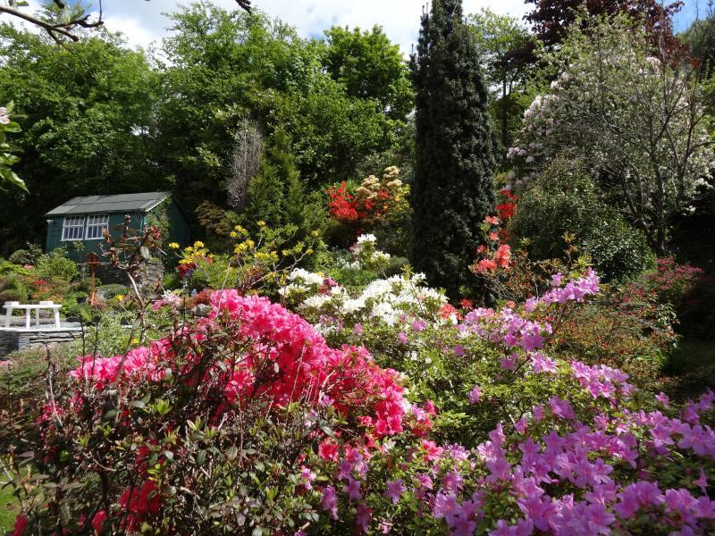 No hay filtros utilizados gloriosa del color en la primavera!