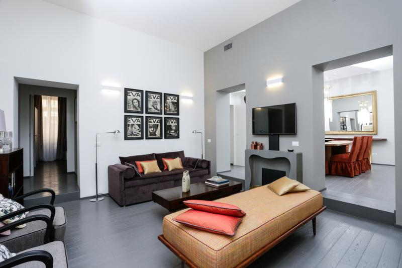 The living room, with Tv, library and  sofa