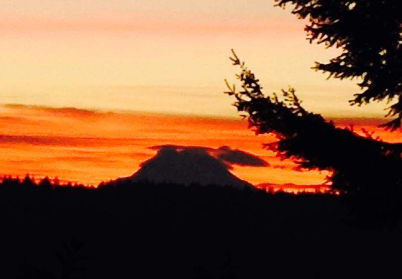 Sunrise from kitchen window. That is Mt. Rainier in the background.