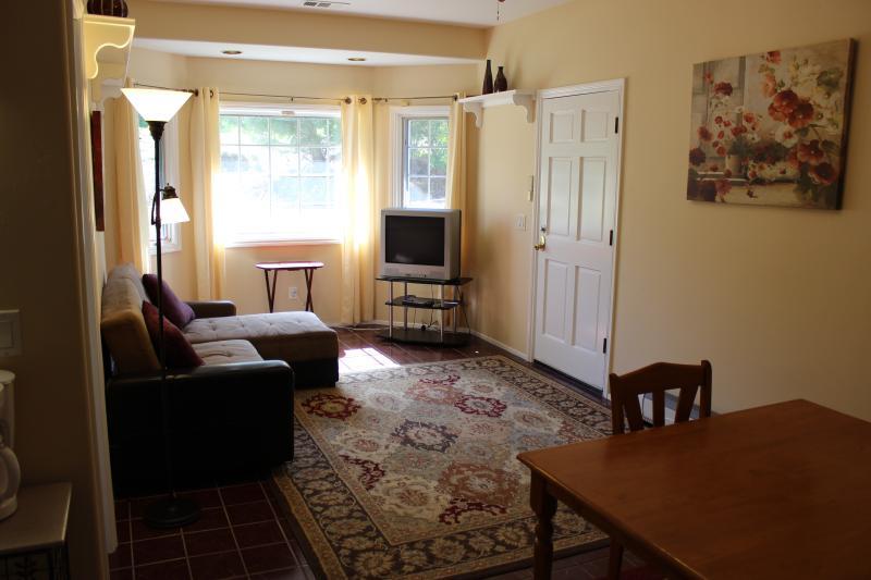Comfortable livingroom greatroom - 12' x 24'