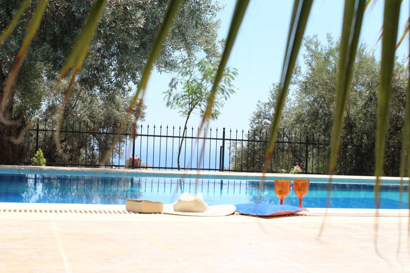 Summer Price Crash £500 Off all New Bookings! Relax in our beautiful large Pool