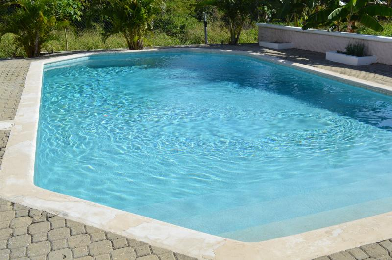 Your private pool. The pool is approx. 15 ft wide x 25 ft long and 3 ft shallow to 6 ft deep.