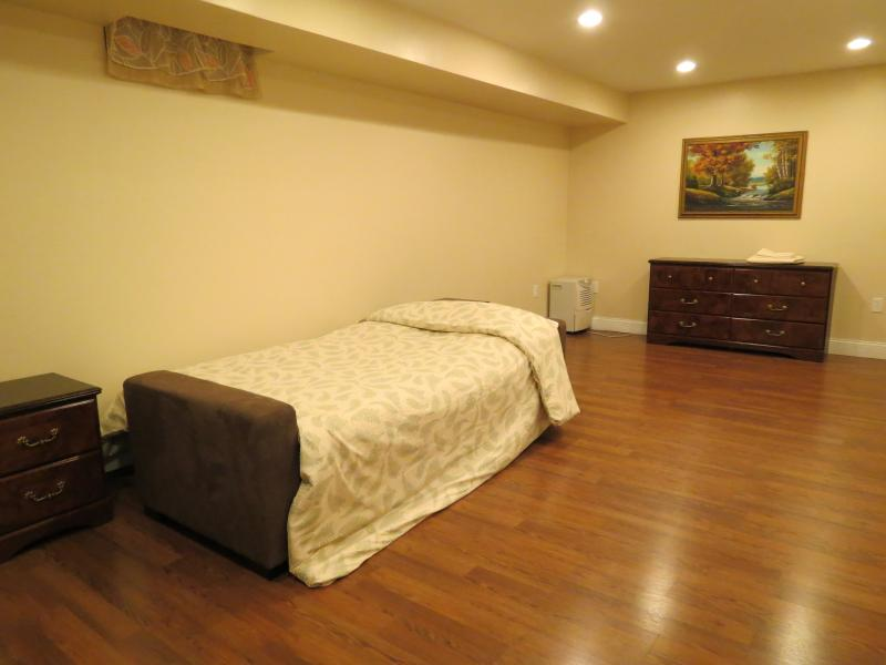 fold-out basement bed