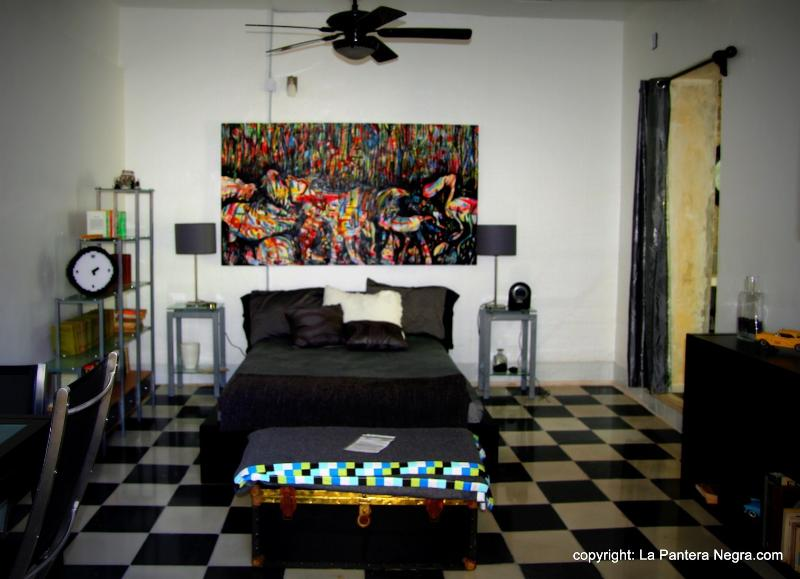 BNB La Pantera Negra Black and White, holiday rental in Uman
