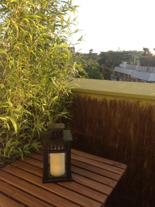 Terrasse avec vue dégagée sur bois de Boulogne