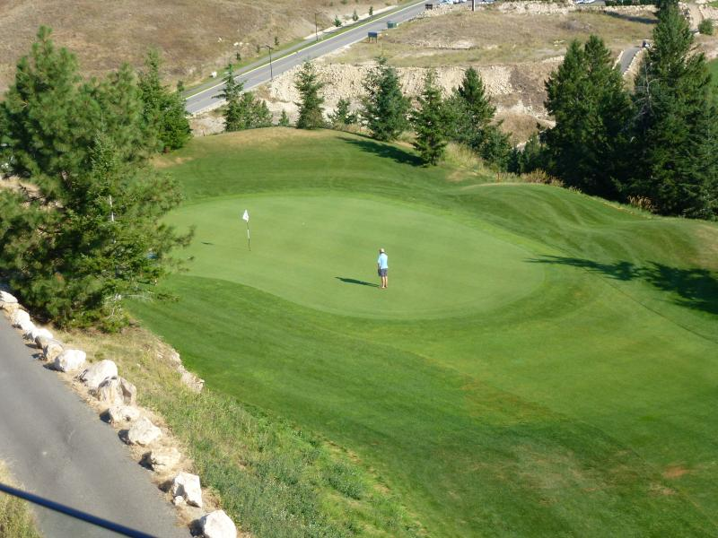 View of fairways from private patio