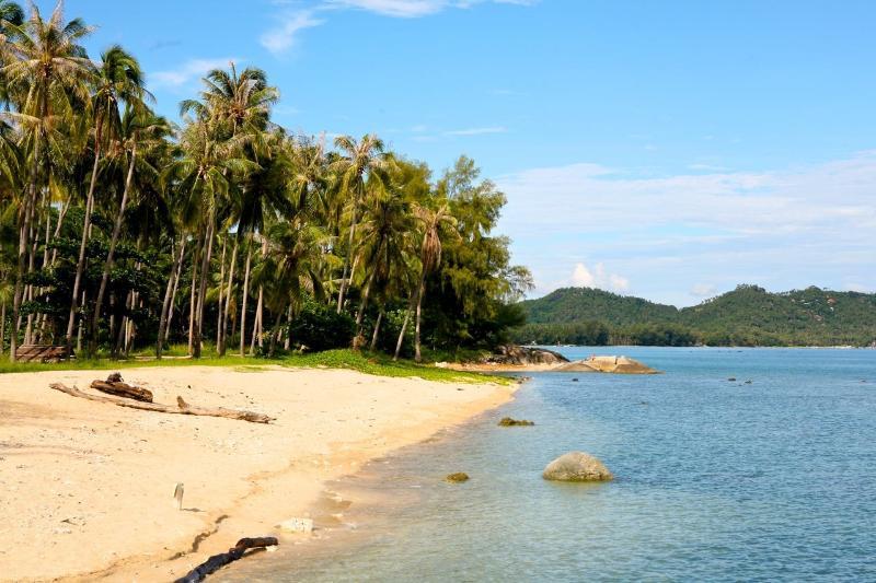 Our Local Beach  5 minutes walk (250m)