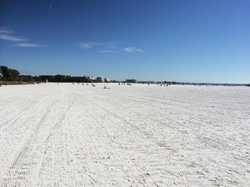 not too busy on the no.1  beach in U.S.A !!!