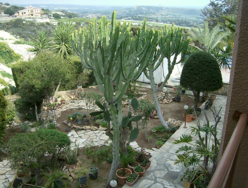 Rantzo garden