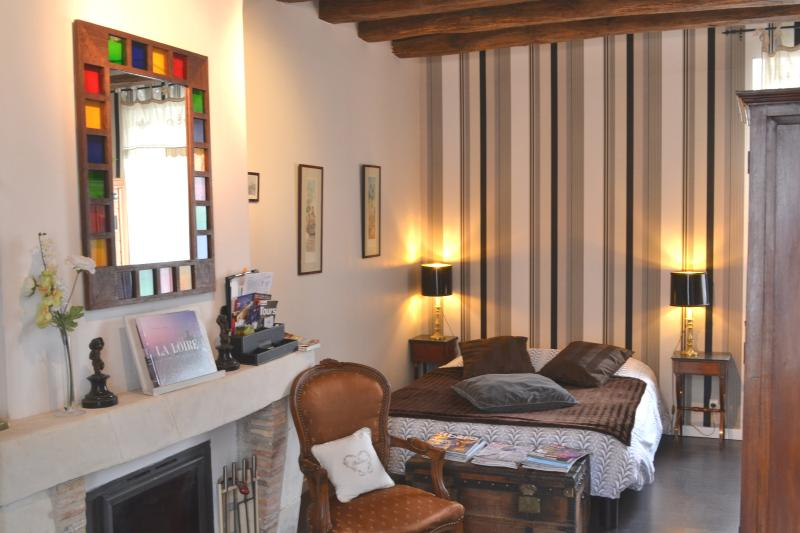 VILLA VINO chambre double SPA, vacation rental in Amboise