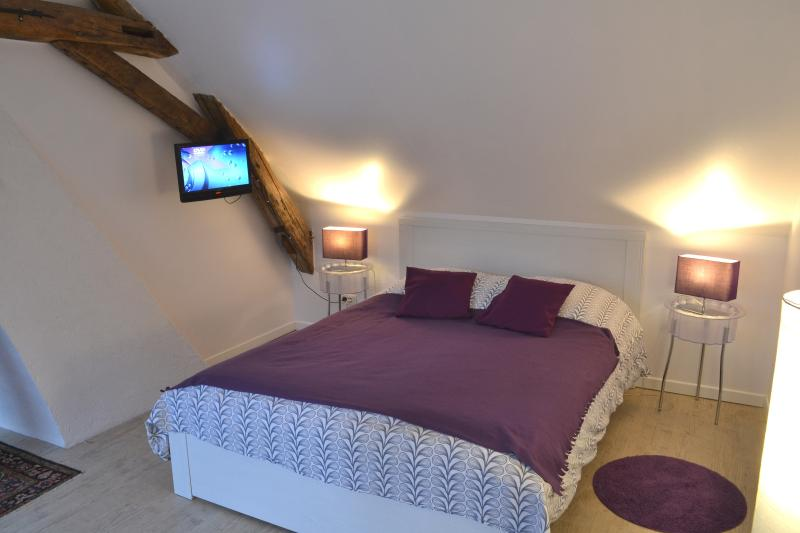 VILLA VINO chambre familiale, vacation rental in Amboise