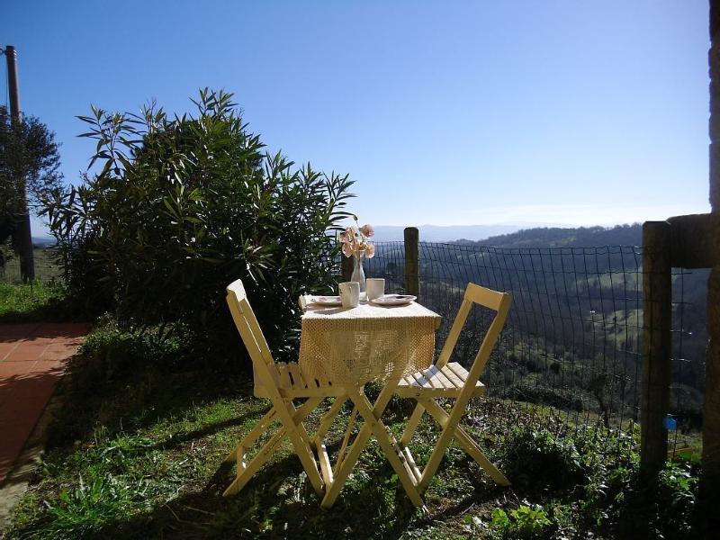 view from veranda with private garden