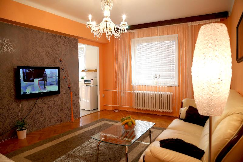 apartment Masarykova 61, holiday rental in Moravia