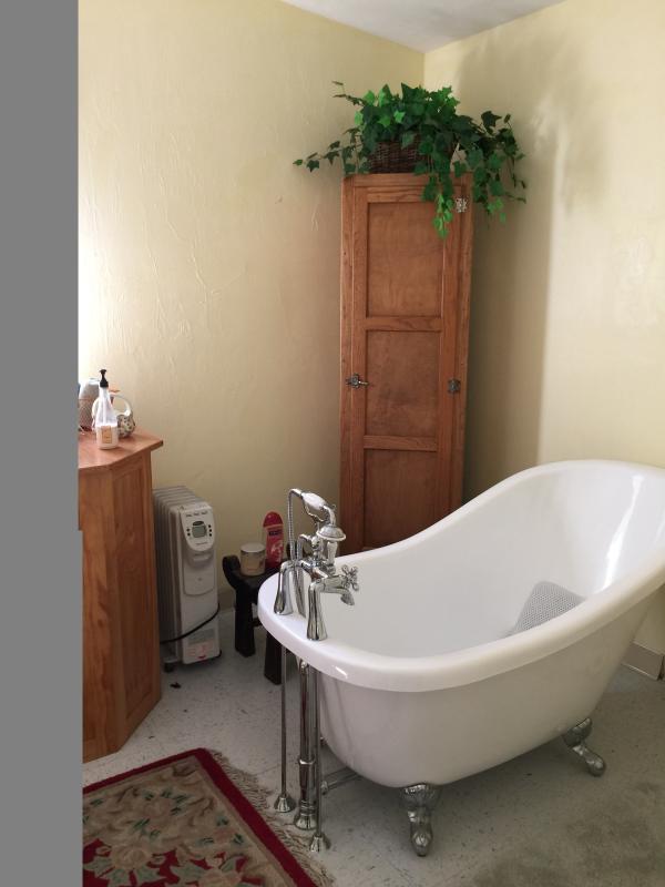 Soaking claw foot tub in bath area