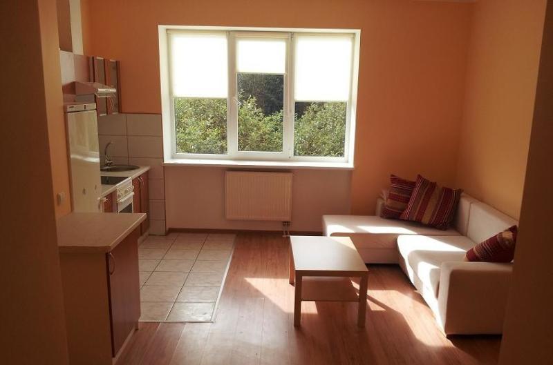 Lovely apartment, alquiler vacacional en Condado de Kaunas