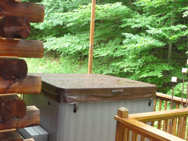 private setting for hot tub
