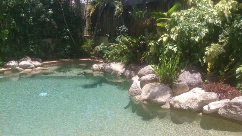 its that gorgeous pool set in the tropics