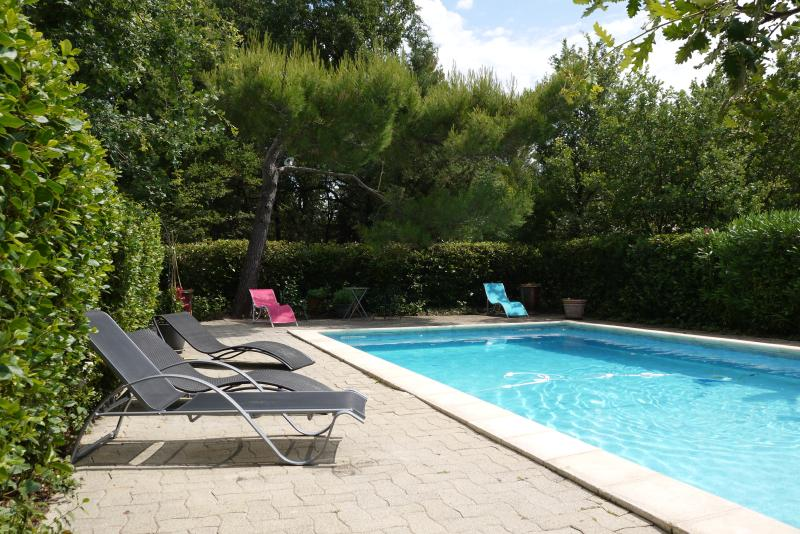 Quiet Hill:Villa-swimming pool-big wooden park, holiday rental in Saint-Pierre de Vassols
