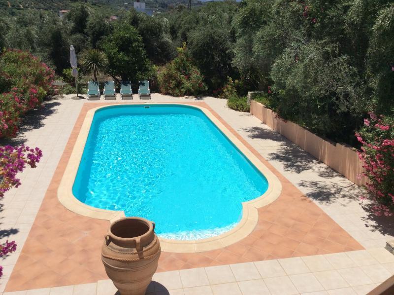 Su gran piscina privada (10m x5m) rodeado de flores