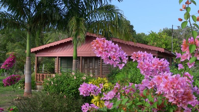 Little Bay Beach House on the Beach, holiday rental in Westmoreland Parish