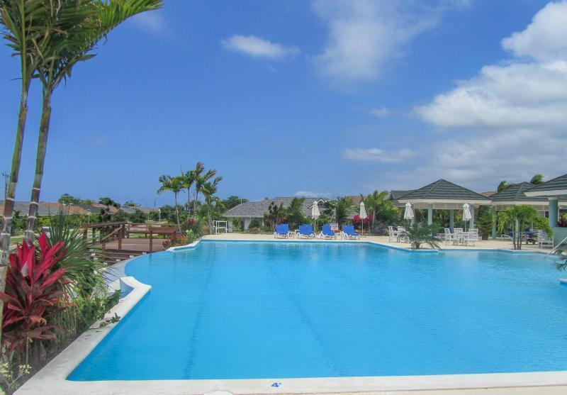 Our Lovely Turquoise Infinity Community Pool