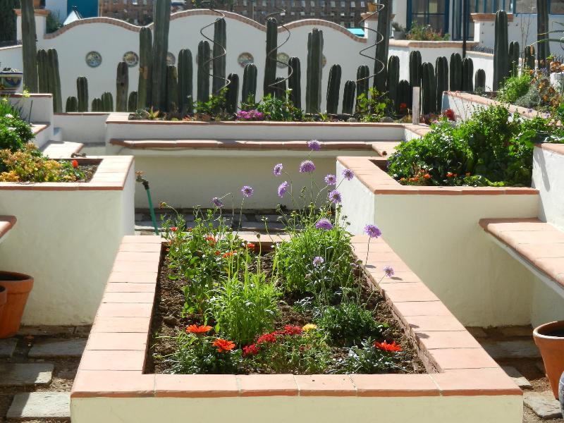 Jardín de la azotea para disfrutar
