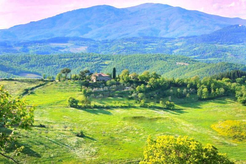 Villa Relais il Pozzeto up to 28 beds in Bed & Breakfast, holiday rental in Citerna