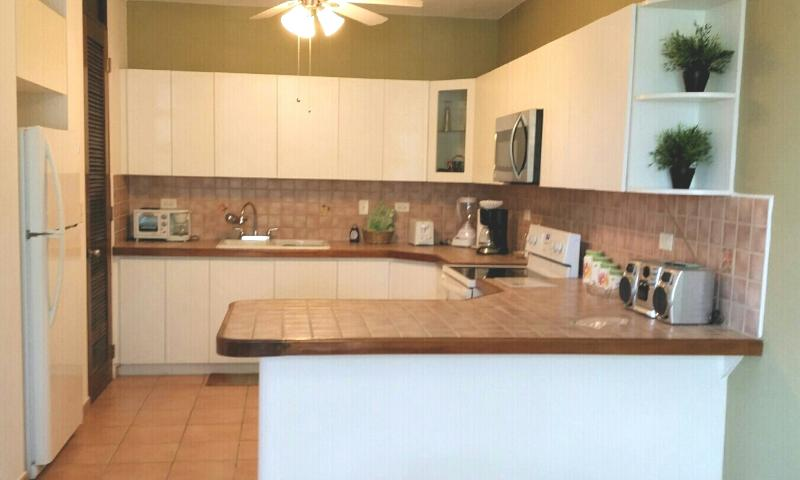 Spacious Kitchen totally equipped with everything you need to cook and eat.