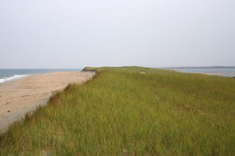 1/4 private beach on South Beach and Edgartown Great Pond