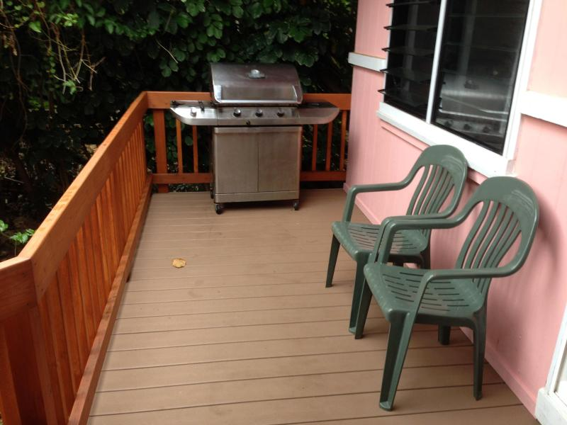 new deck and BBQ