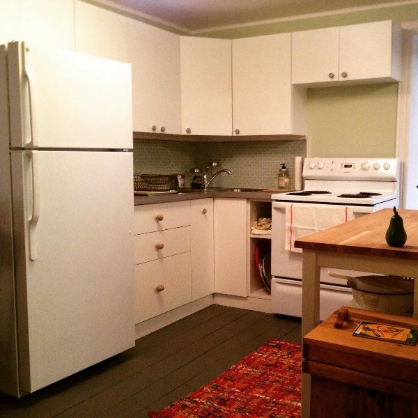 There is a modern kitchen with all appliances, dishes, pots and other cooking utensils for meals
