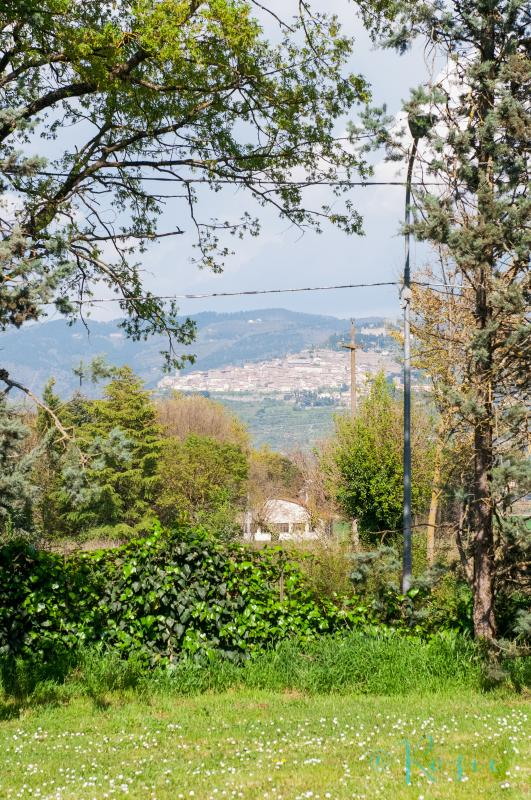Views of Cortona from the garden