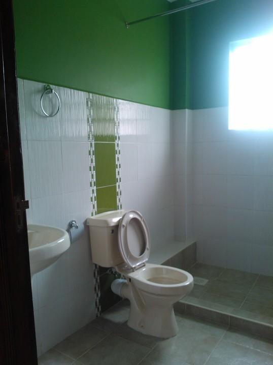 Toilet cum Shower