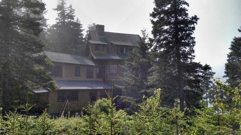 Drie verdiepingen huis met unieke architectuur, in de boomtoppen, door Bunkers Cove