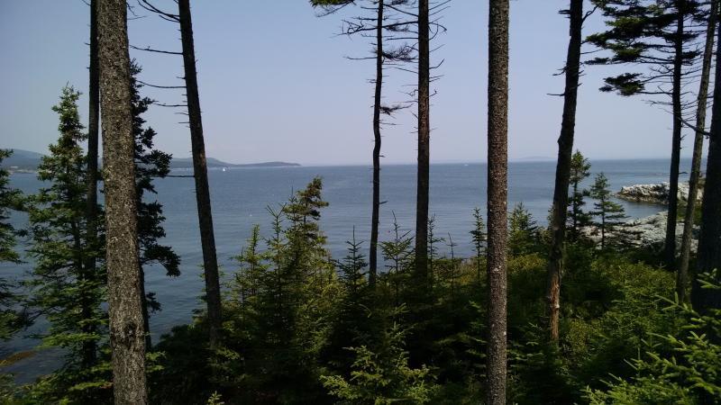 Uitzicht vanaf bos in de buurt van huis