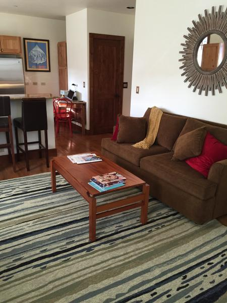Cozy stylish living room. Queen size sofa sleeper.