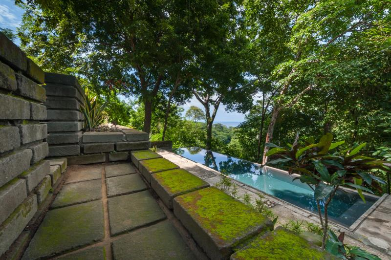 Our incredible shared infinity pool
