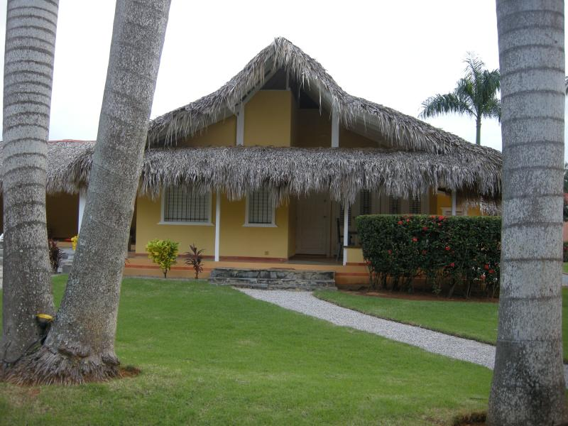 Queen Palm Tree House