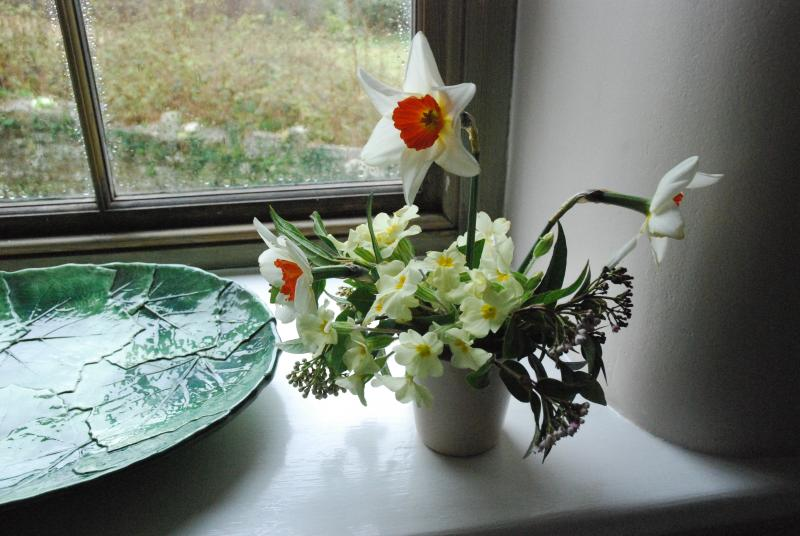 Wild country flowers. Your holiday home will come with flowers.