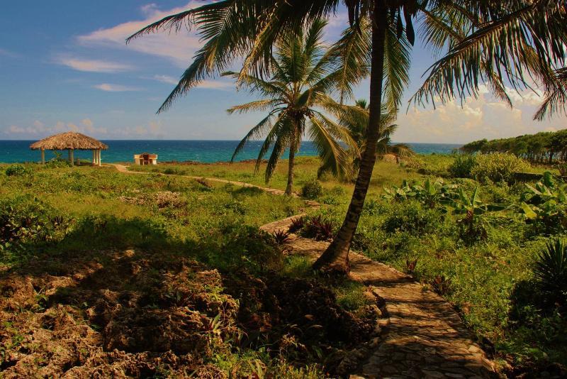 Un pasillo iluminado por medio de la vegetación natural conduce a la glorieta frente al mar y parrilla.